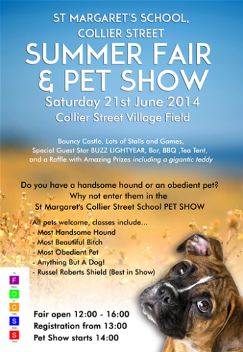 Collier St summer fair and pet show